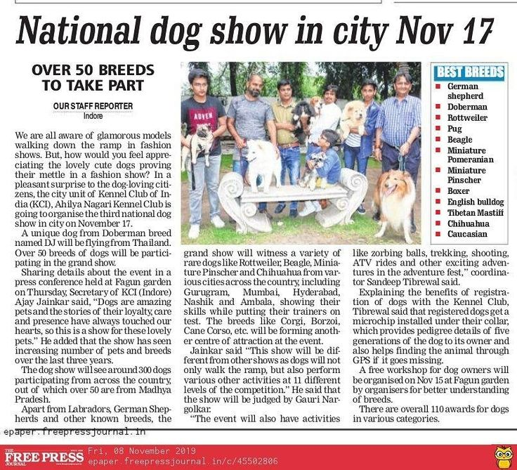 Pre Event Media Coverage For The Upcoming Dog Show At Indore On