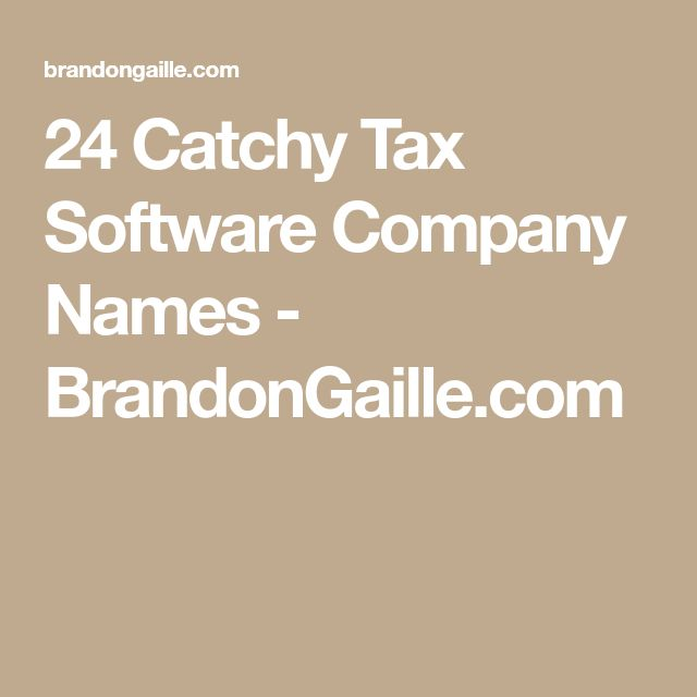 24 Catchy Tax Software Company Names - BrandonGaille.com