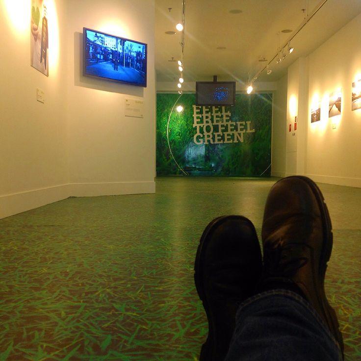 Gallery. janholmberg.weebly.com