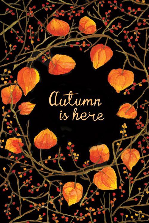 Rustic autumn chinese lantern illustration by Karina Manucharyan
