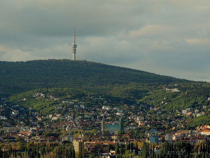Pécs ,zöldellő Mecsek