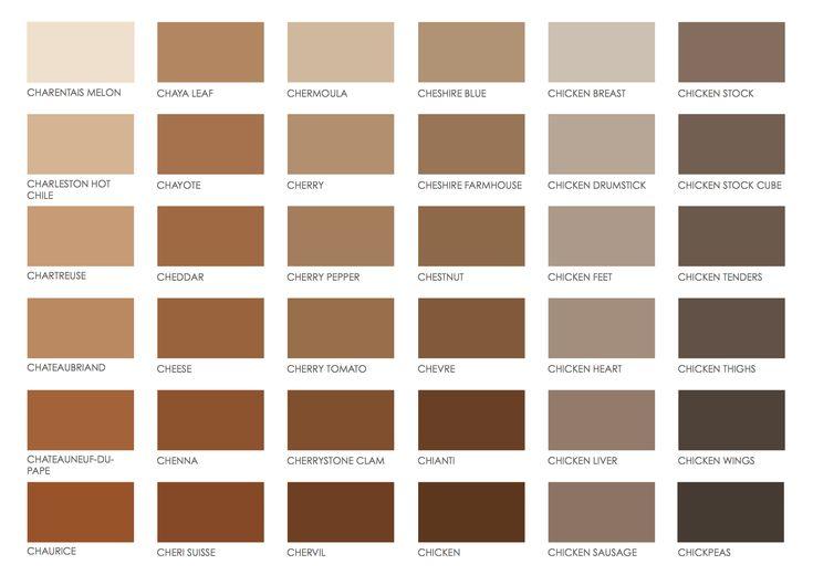 Dark Chocolate Paint Color