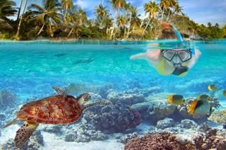 """Santo, with many wrecks and reefs to be explored, is a very popular tourist destination for divers. Champagne Beach draws tourists with its pink sand and clear waters. The """"Western Side"""" of the island contains many caves which may be explored, and cruise ships often stop in at Luganville."""
