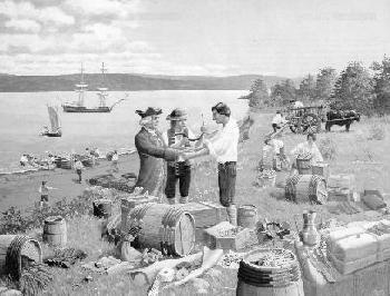 Ils ont établi donc des liens économiques avec les colonies de la Nouvelle-Angleterre et d'autres colonies françaises. La Nouvelle-Angleterre les fournissait en mélasse, en chaudrons, en doloires, en pipes en terre,  poudre à canon, en étoffes  en rhum. De Louisbourg ils obtenaient du coton,  fil à coudre,  la dentellerie, .En échange de ces articles les Acadiens offraient des grains récoltés de leurs terres fertiles, et des fourrures qu'ils prenaient eux-mêmes ou qu'ils achetaient des…