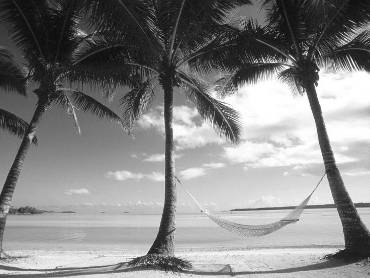 black and white photos | Black and White Beach Landscape Wallpaper HD 8