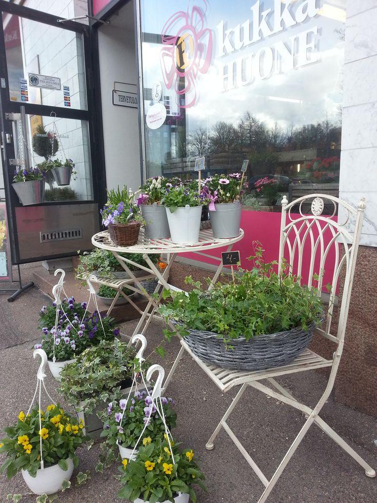 Kesäkukat #kukat #flowers #Kotka