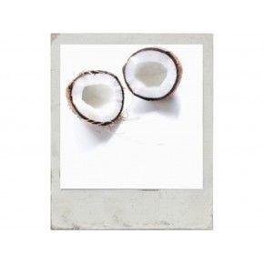 photoblok coconut