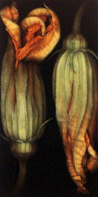 fleur de courgette: Deep Fried Zucchini, Squash Blossoms, Zucchini Blossoms, Color, Food, Plants, Flower Gardens, Zucchini Flower, Beautiful Photography