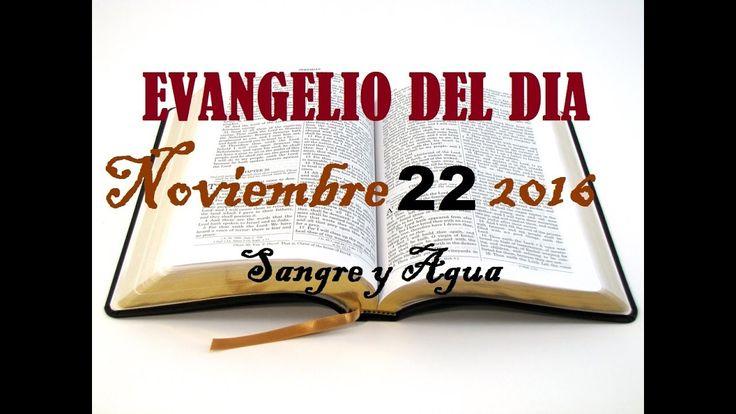 Evangelio del Dia- Martes 22 de Noviembre 2016- Sangre y Agua