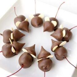"""Glue"" maraschino cherries to chocolate kisses to create cute little Christmas mice! Super fun for the kids!"