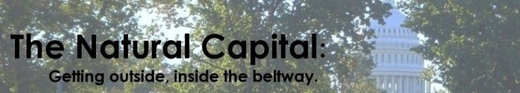 The Natural Capital. Info on planetariums (for kids interest) in & around the Capital area.