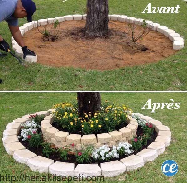 Stellen Sie Steine Und Blumen Zu Den Fussen Der Baume Um Sie Zu Verschonern Diy Hinterhof Gartengestaltung Vorgarten Anlegen