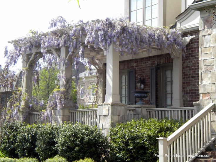 Pergola Front Porch With Wisteria Curb Appeal