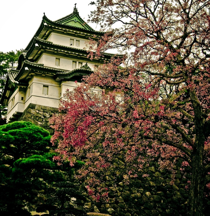 Imperial Palace - Tokyo, Japan by Horacio Rodriguez, via 500px