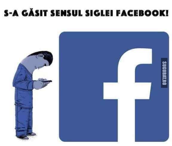 Sensul siglei facebook. - Sugubat