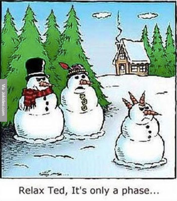 Snowman Jokes for Adults   Funny snowman cartoon