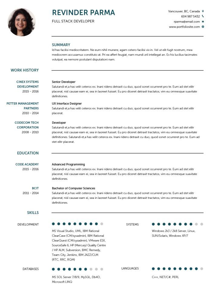 cv example in english template