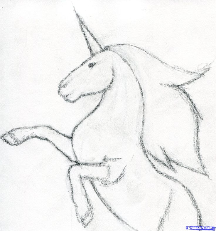 How to draw unicorn - youtube, Our animated drawing lessons were specially designed for kindergarten and elementary school children. Description from besttoddlertoys.eu. I searched for this on bing.com/images