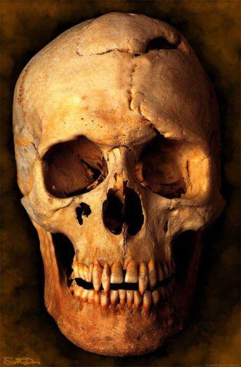 * Vampire Skull *