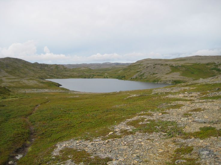 Lake in the fell.