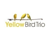 Elvis - Cant help falling in love by Yellow Bird Trio on SoundCloud