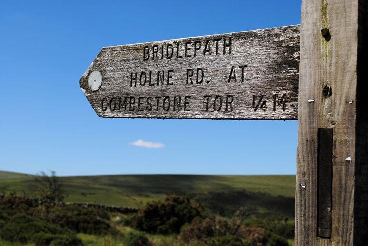 Combestone Tor - That way! Dartmoor