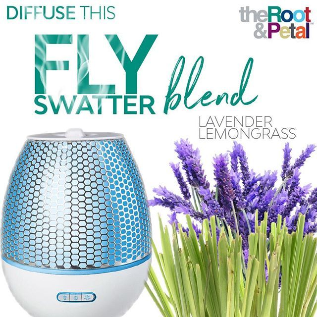 Flies Hanging Around Front Door Part - 26: Hereu0027s A Tip I Discovered Last Summer: Lavender And Lemongrass REPEL Flies!  I Like To Add 2-3 Drops Each To The Diffuser That Sits By My Front Door To  Keep ...