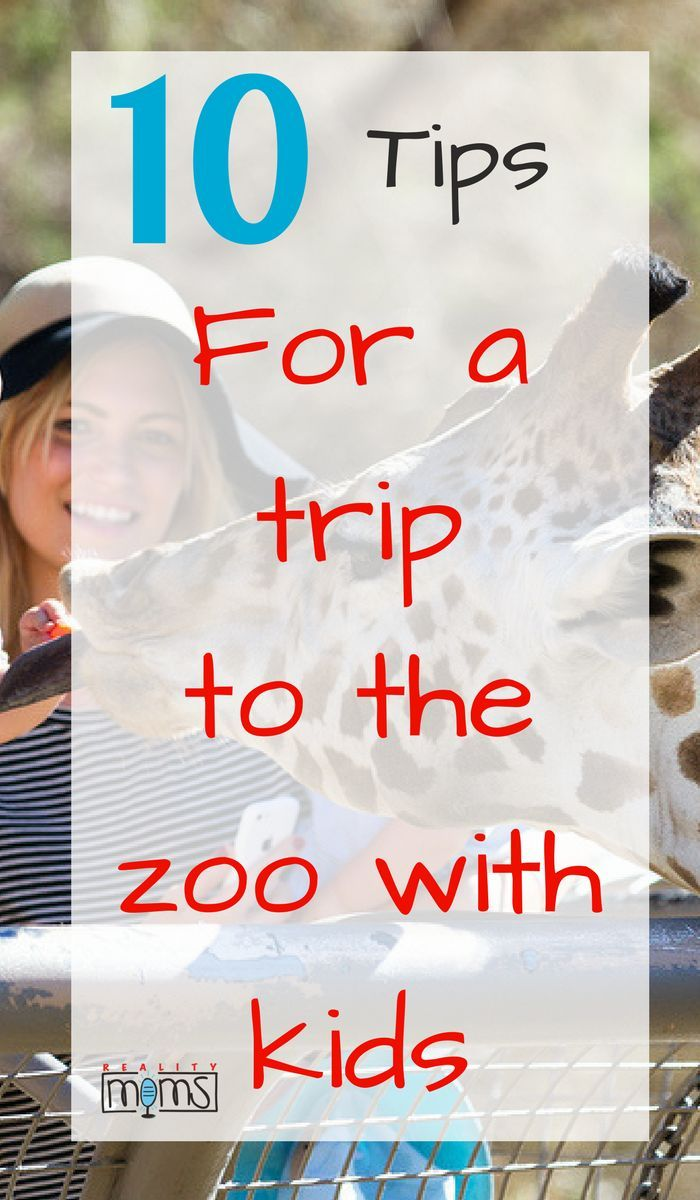 Thinking about visiting the zoo with kids? You�ll need these tips for a zoo trip because going places with kids can be fun, but also challenging! Make sure you know what outfits to wear, how to keep the kids happy, hacks to make the day easier, and more.