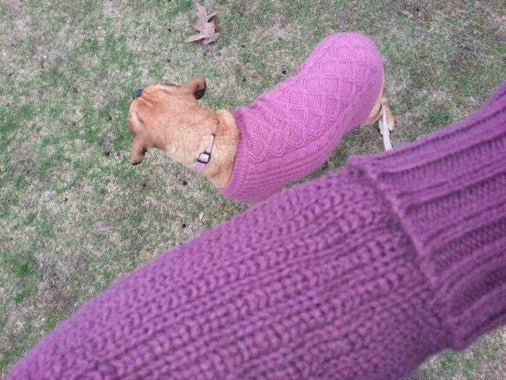 That awkward moment when you realize that you have dressed the same as your dog!
