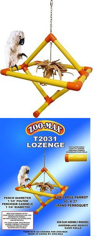 Toys 20736: Parrot Pet Bird Toy Zoo Max Losang Hanging Perch Large -> BUY IT NOW ONLY: $199.99 on eBay!