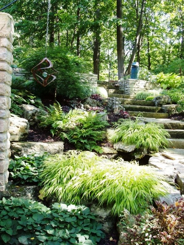 17 best images about hillside plantings on pinterest sun for Hillside landscaping plants