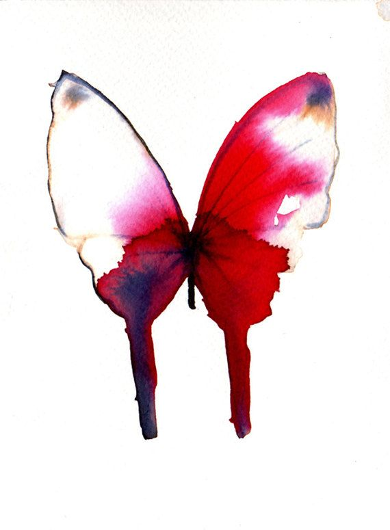 deep red butterfly with white tipped wings by metamorphosing