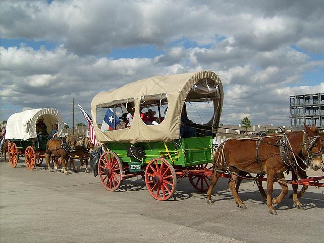 Wagons Ho - Texas Trail Ride
