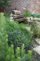 Glen Iris Garden