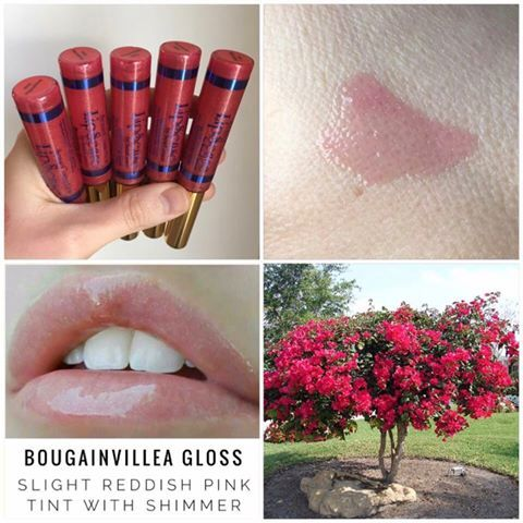 Bougainvillea Gloss (aka B. Gloss)  It has a reddish-pink tint and enhances the color of any LipSense shade.  A great option to wear alone too!