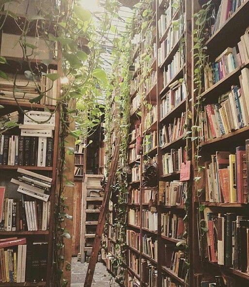 I'm guessing it's a used bookstore