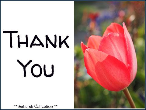 Salmiah Collection: Thank You Card 39