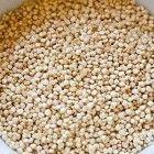 Quinoa is een echte powerfood en is glutenvrij. Dit komt omdat het officieel geen graan is, maar familie van de spinazie.