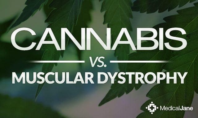 Cannabis Shows Promise for Treating Symptoms of Muscular Dystrophy | Medical Cannabis/Marijuana