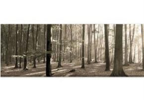 This stunning canvas of a forest scene is perfect for the simple, peaceful ambiance I am trying to create in my bedroom.