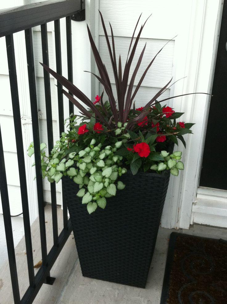 Planter idea for front door garden ideas pinterest for Front door garden ideas