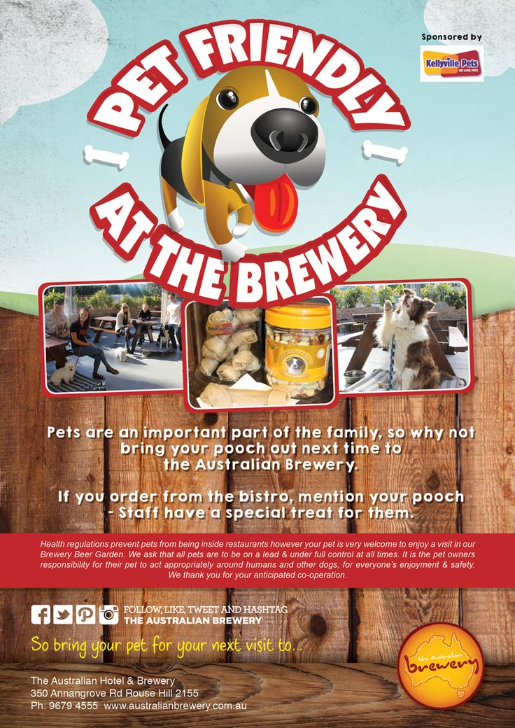 We are now pet friendly! @ The Australian Hotel and Brewery