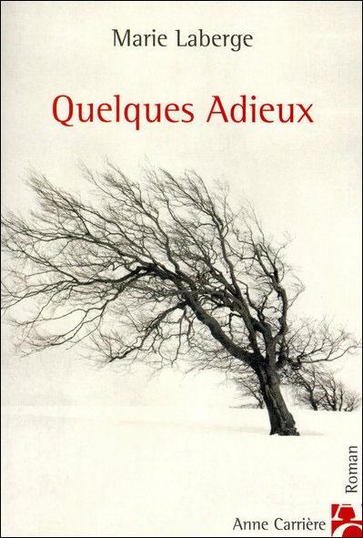 J'ai été fasciné par ce roman qui se déroule dans les rues de Québec. C'est le premier qui m'a fait pleurer à chaudes larmes!!!