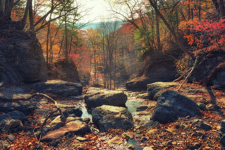 Hill Photograph - View Of An Autumn Forest And A Stream Near Boulders In The Hills by Mariia Kalinichenko