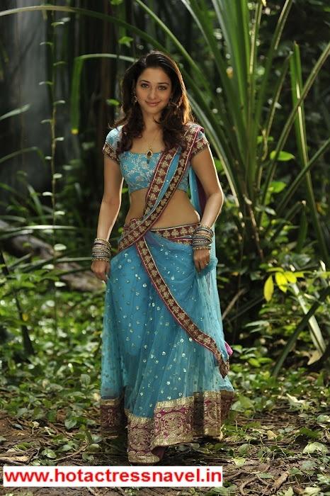 Wwwhotactressnavelin - Sari South Indian Actress Tamanna -3377