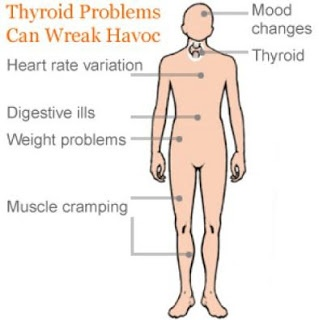 What Are the Main Thyroid Problems, Symptoms and Cures? Maybe I have thyroid problems. These symptoms happen to me!