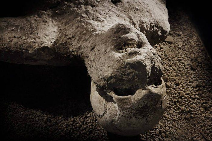 These pictures of Pompeii's volcano victims are damn excruciating.