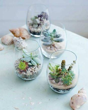 ガラスの中で多肉植物を育てる時は蒸れやすくなるので、風通しに注意します。小さな世界にときめいてしまいそうです。