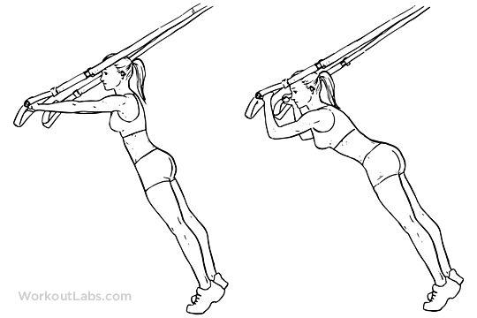 25  best ideas about suspension straps on pinterest