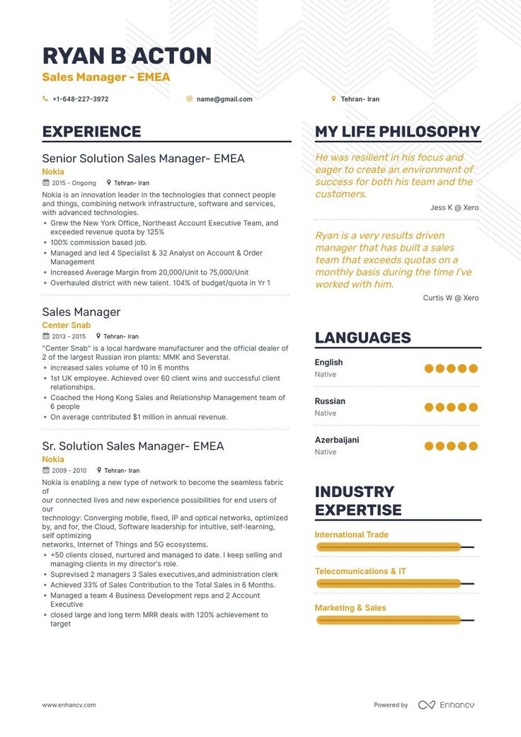 Best sales manager resume examples with objectives skills